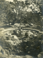Knapp Estate