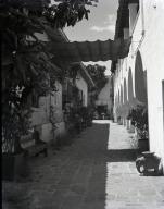 Fiesta - El Paseo