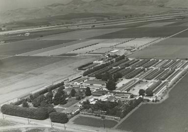 Rosemary Farms aerial view