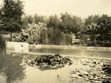 Gavit Estate