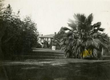 McCalla Estate