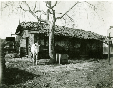 Cookhouse behind James Burke Adobe