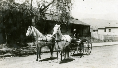 Joaquin Carrillo Adobe
