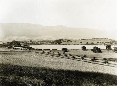Hope Ranch - Laguna Blanca & Las Palmas Drive