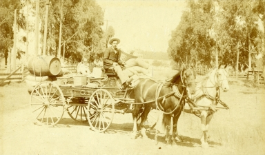 W.C. Show's Horse Delivery Cart With Supplies