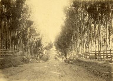 Santa Barbara County Roadway