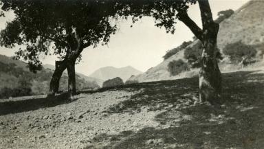Tepusquet Canyon