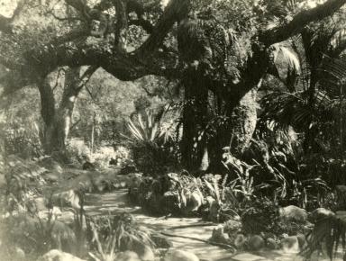 Santa Barbara Gardens