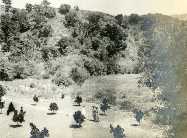 Shepard's Ranch
