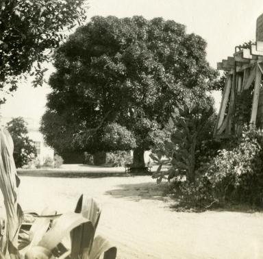 Albert Packard Residence