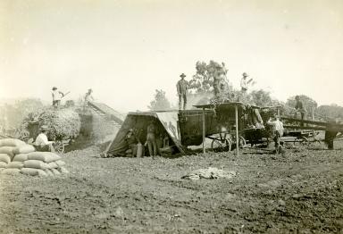 Carpinteria Farming