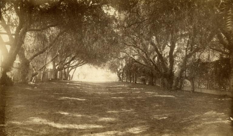Pepper Lane, Montecito