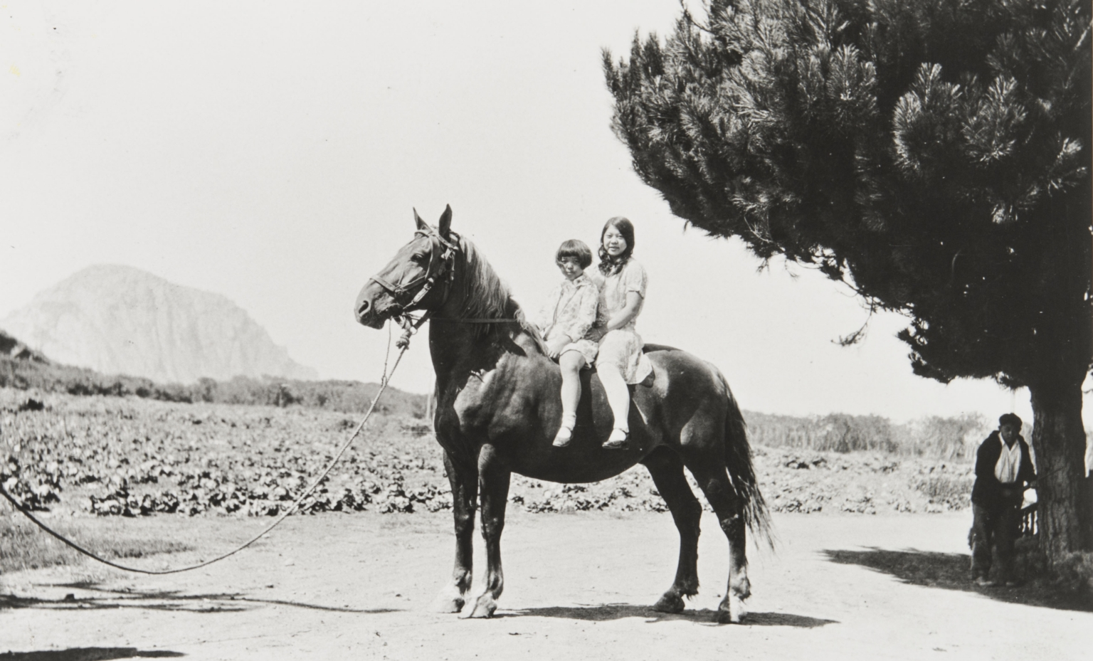 Nellie Nagano and Doris Aiso at Nagano Farm. Morro Bay : about 1930. Mitsugi Aiso by tree. Morro Rock in background.