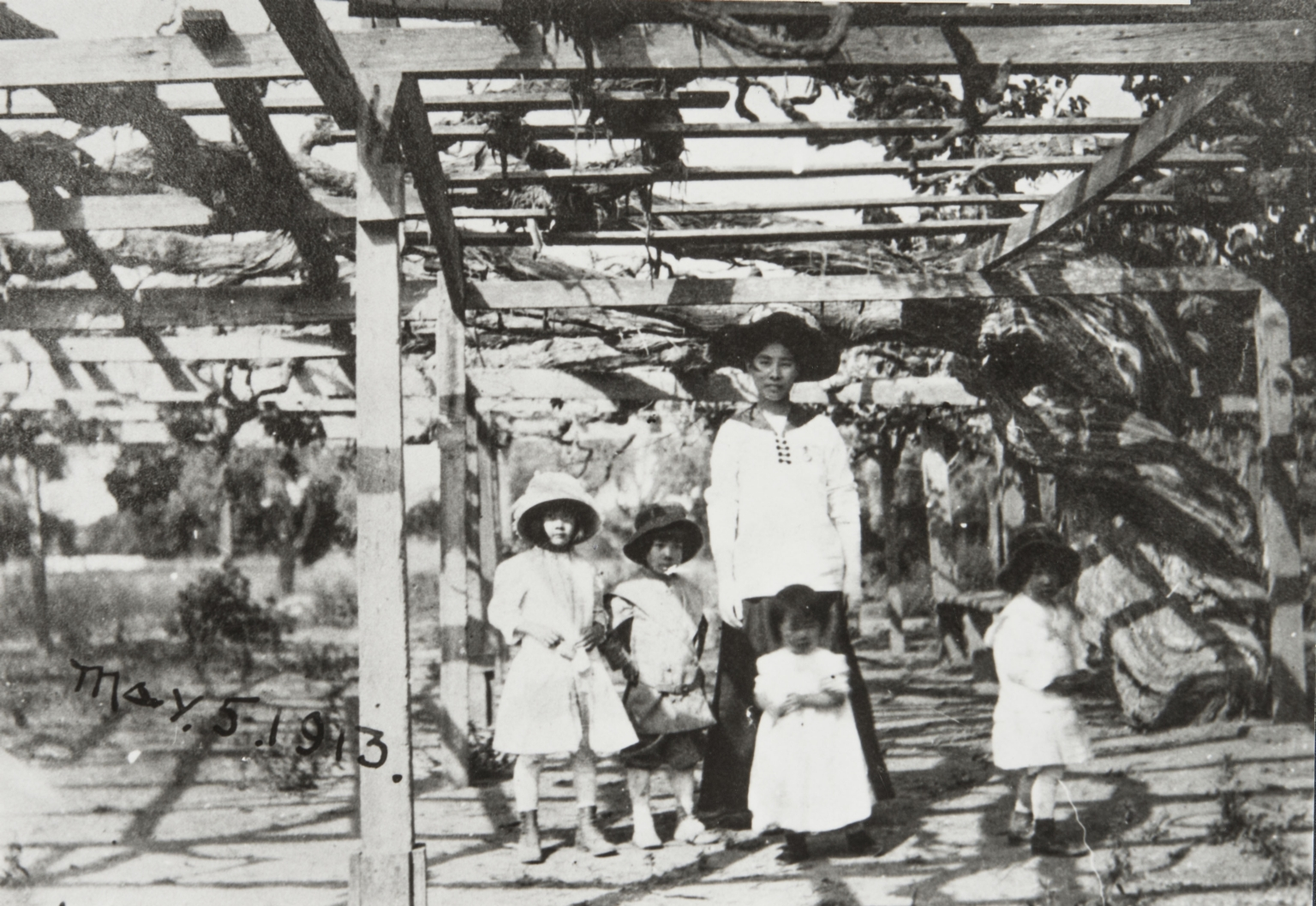 Elizabeth Ezaki Brown, William Ezaki, Ruth Ezaki and James Ezaki with the mother under the Carpinteria grapevine, the largest grapevine in the world. Carpinteria : 1913.