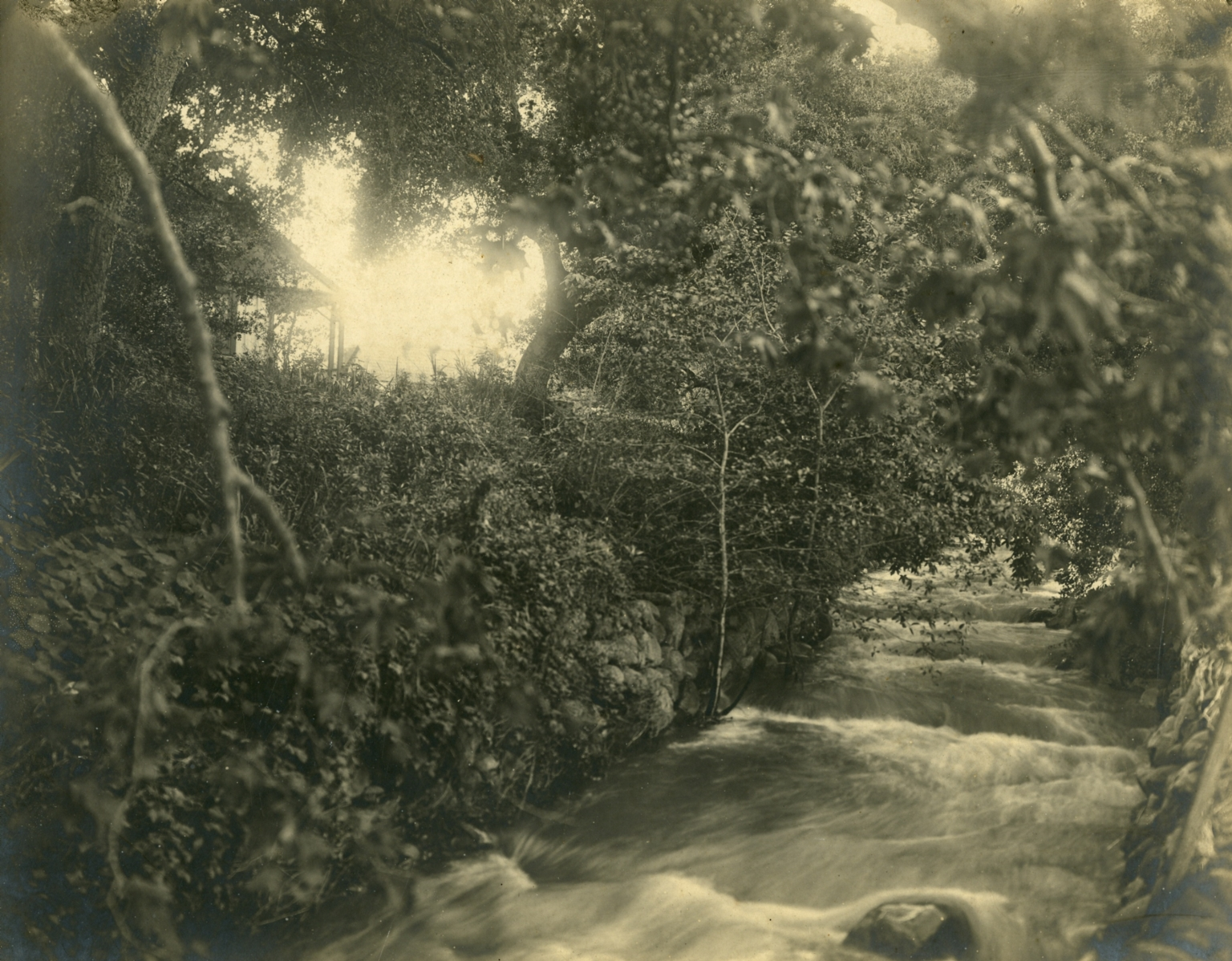 The Grove House and Montecito Creek