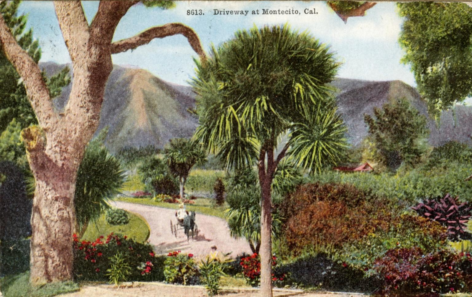 Montecito Driveway