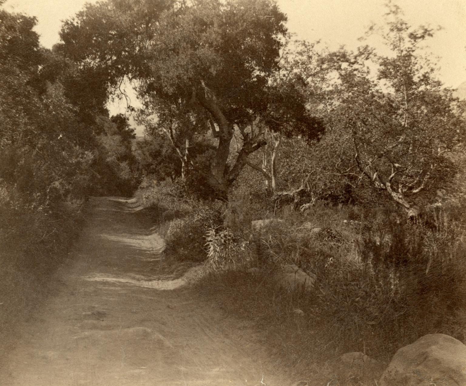 Santa Barbara Roadway